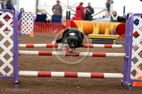Agility Disasters - Caught on Film